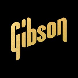 Gibson 70s Logo Gold Water Slide